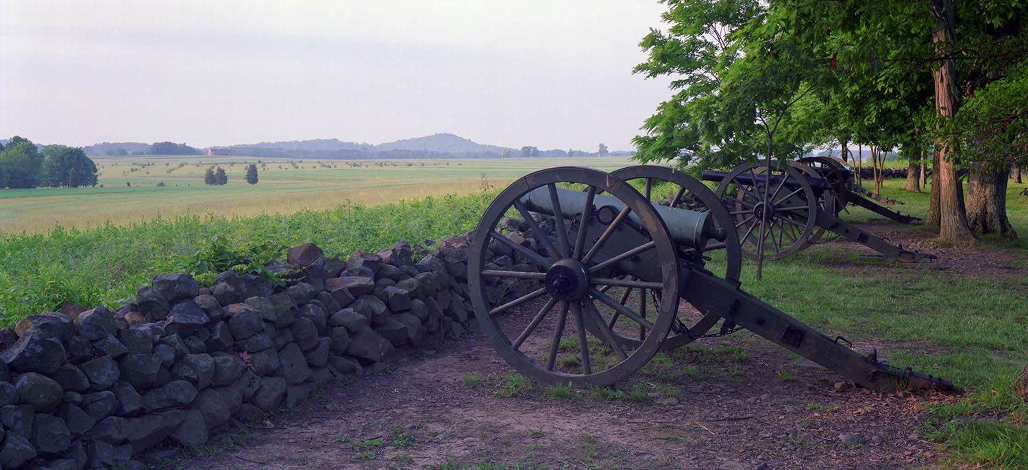 Cannon in the Clearing