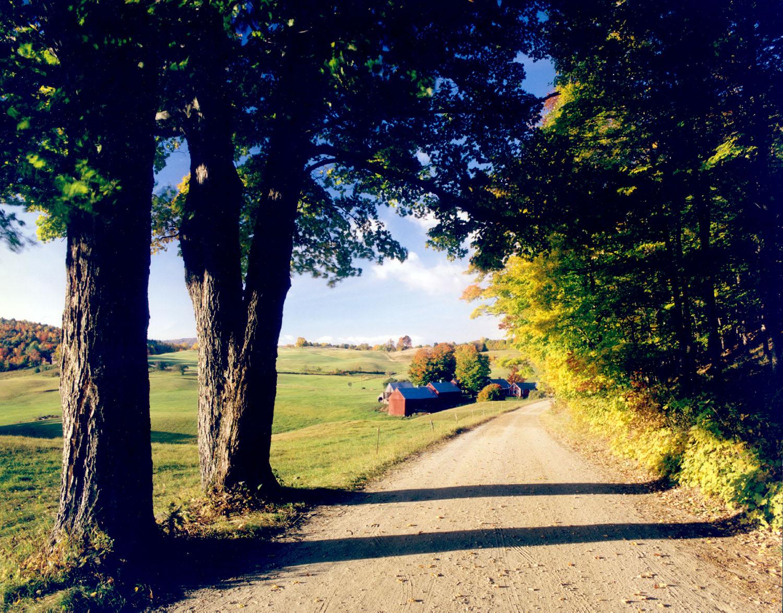 The Jenne Farm in Summer