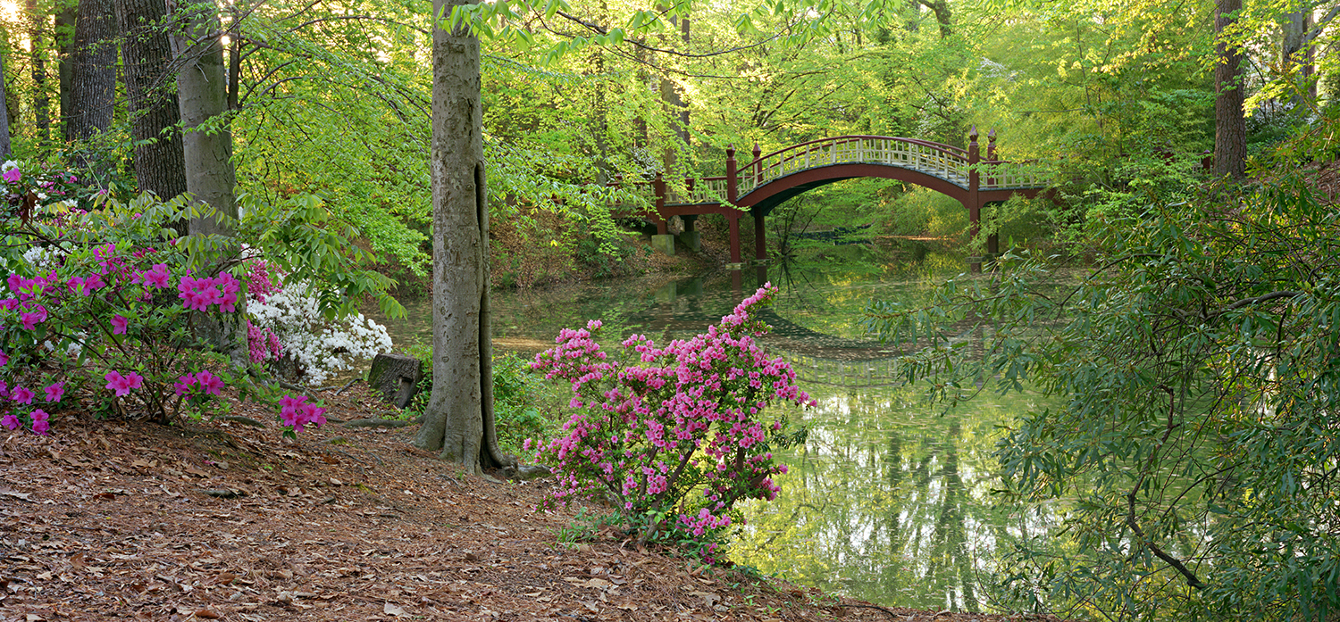 Crim Dell at William and Mary