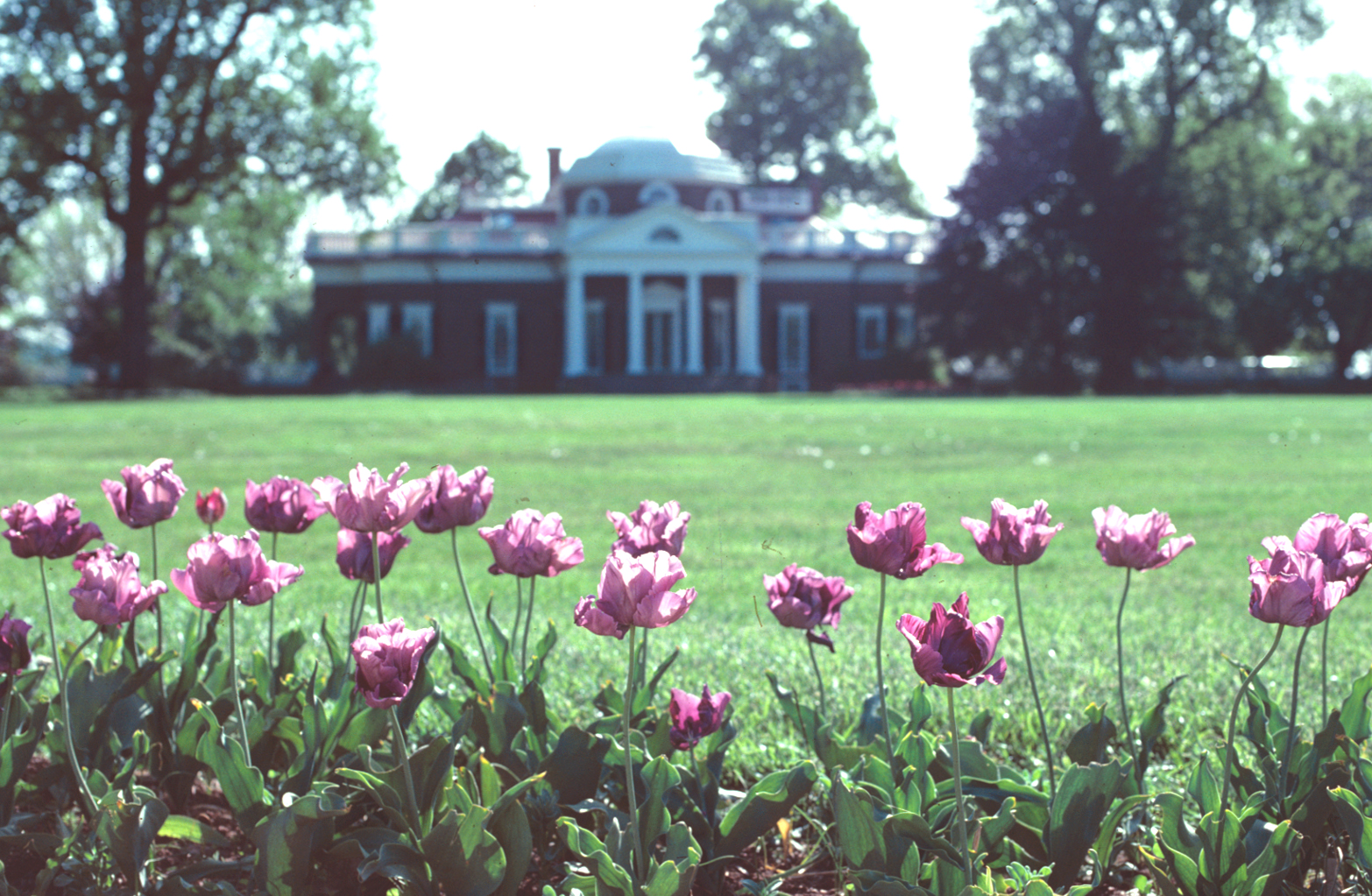 May at Monticello
