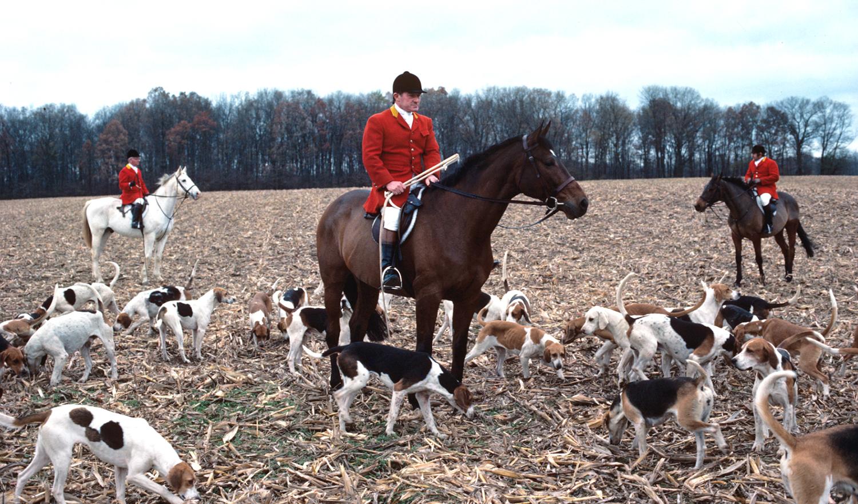 The Fairfax Hunt