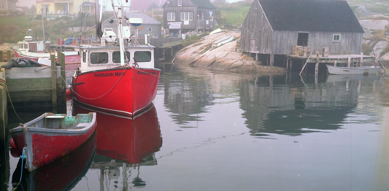 The Harbor Mist