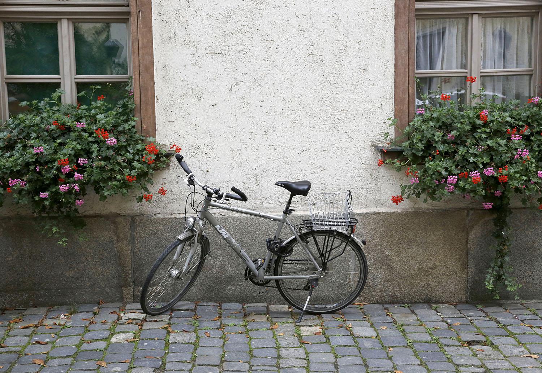 Czech Bike