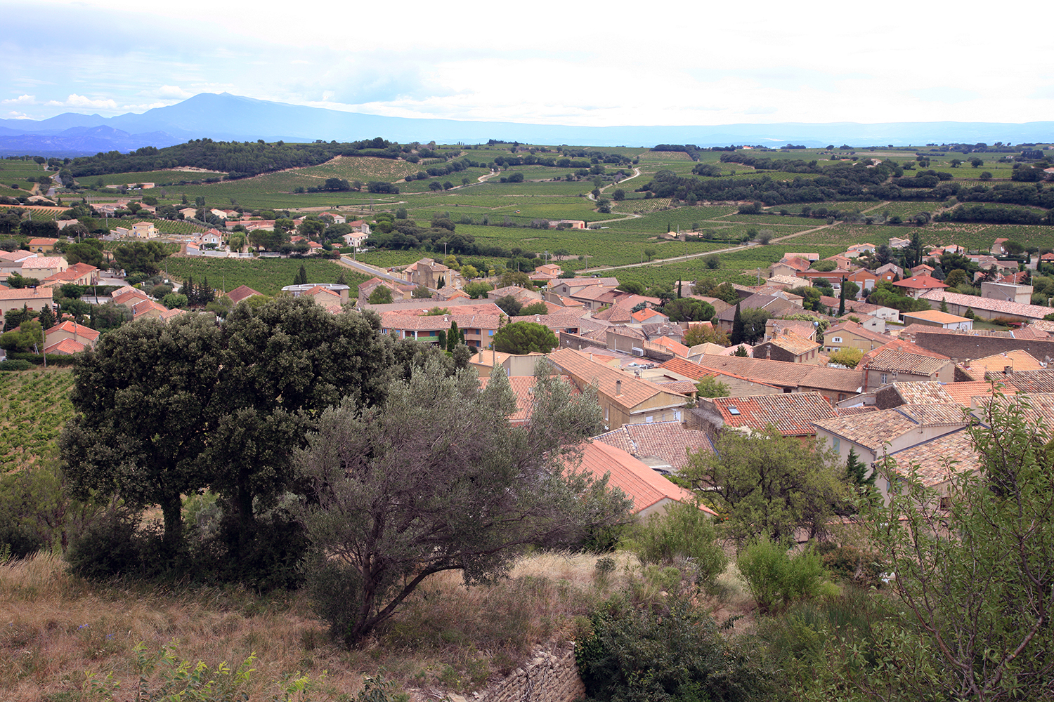 The Village of Chateaneuf du Pape