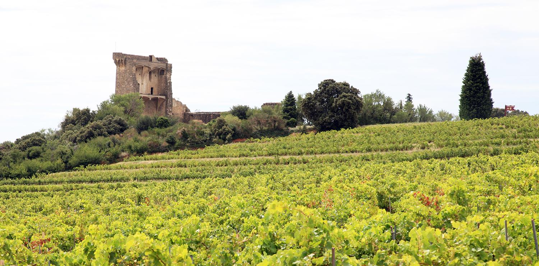 Papal Castle Ruins