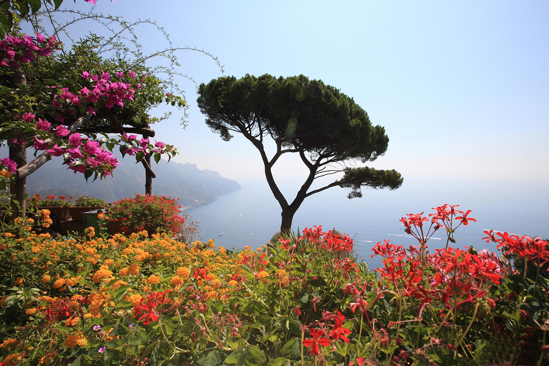 Flowers of Ravello