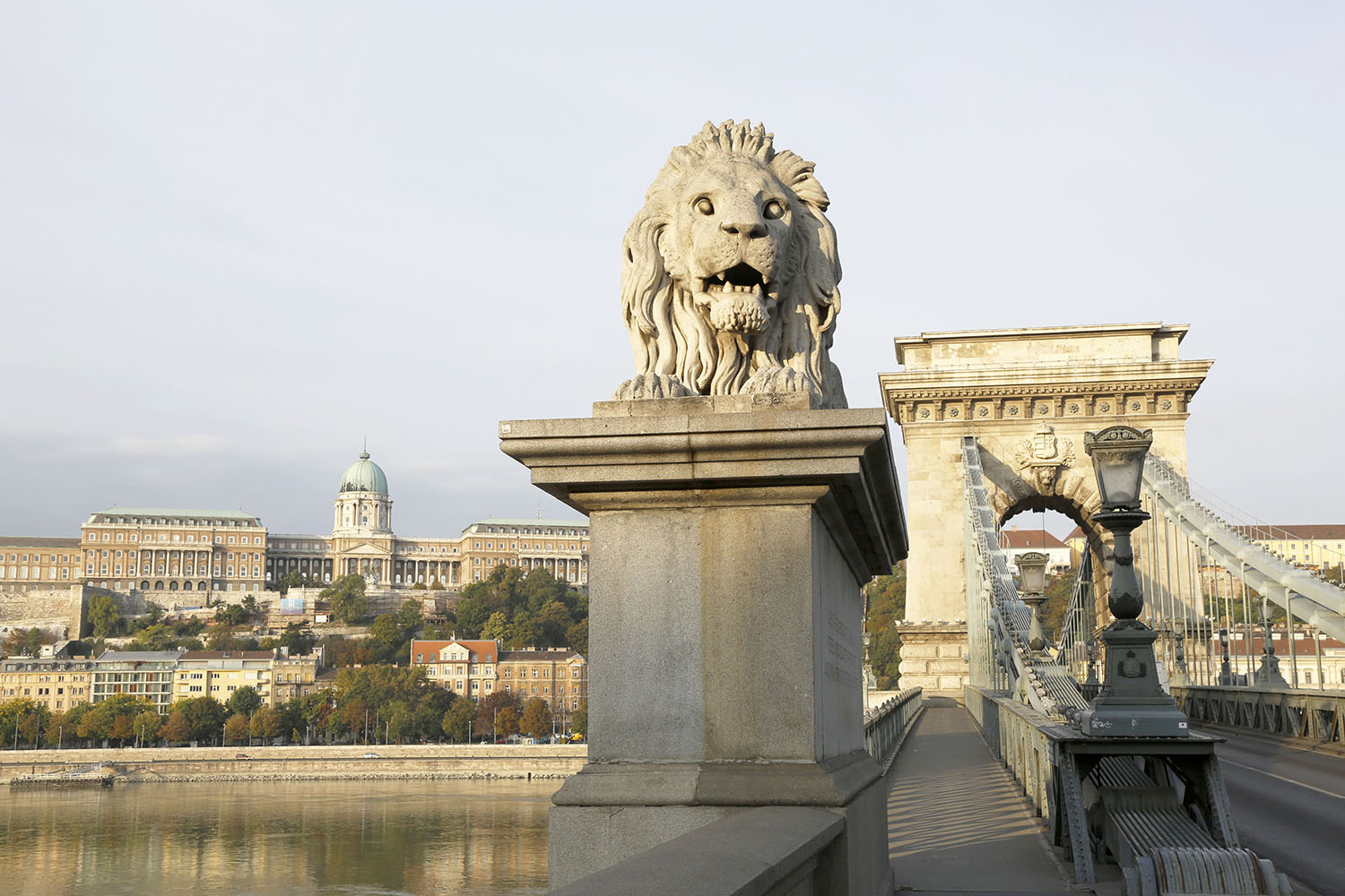 The Lion at the Chain Bridge