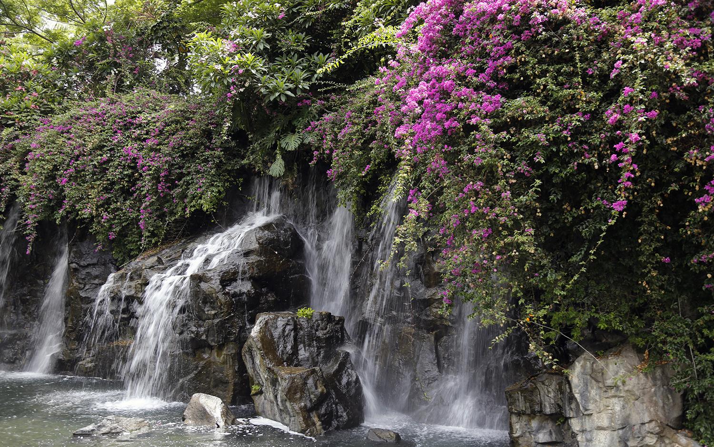 Waterfall in Wailea