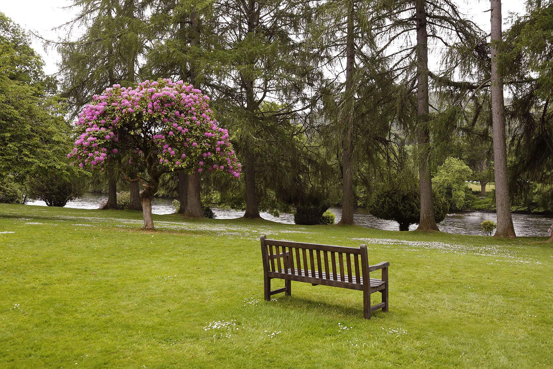 The Bench in Dunkeld
