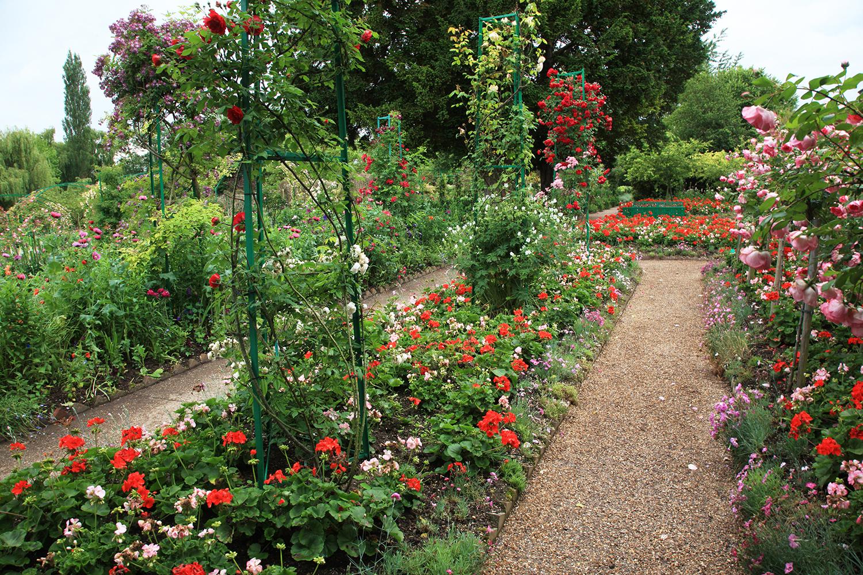 A Fragrant Path