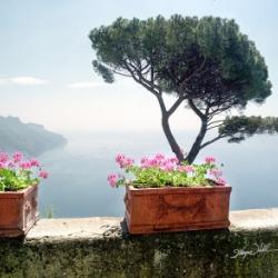 Amalfi, Positano & Pompeii