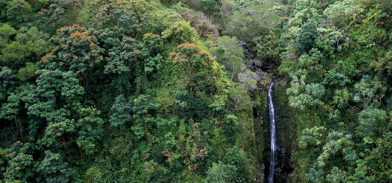 Hana Waterfall