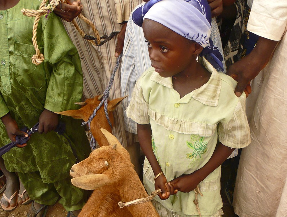Thanks to The Goat Project, Damata's daughter is able to receive an education.