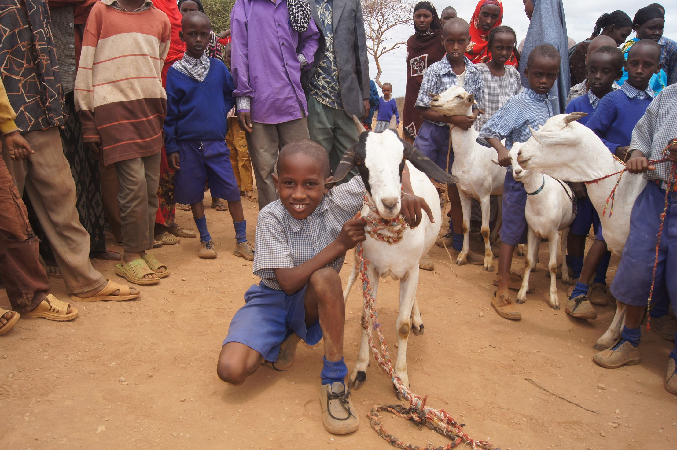 Join The Herd - A monthly pledge of $59 can change the lives of families and even entire villages this year!