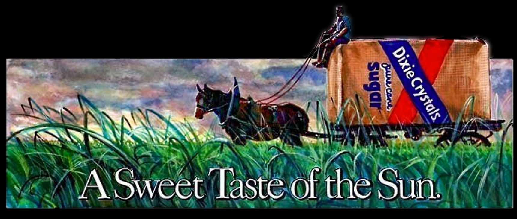 """Outdoor Advertising- """"A Sweet Taste of the Sun"""" • The Savannah Food Company. Designed & Illustrated marker comp for this 14' by 48' billboard. © KT"""