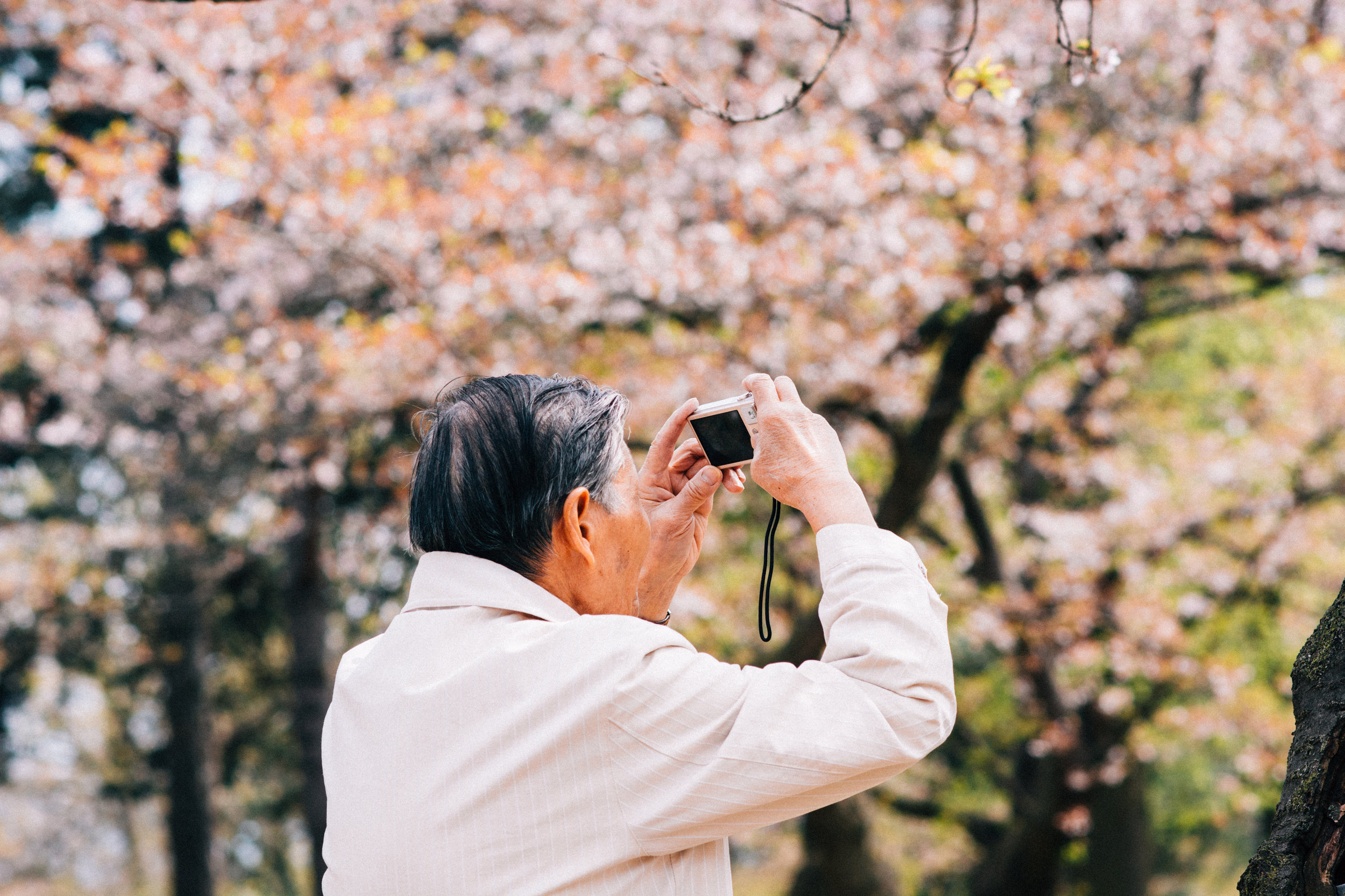 Sakura Blog -299.jpg