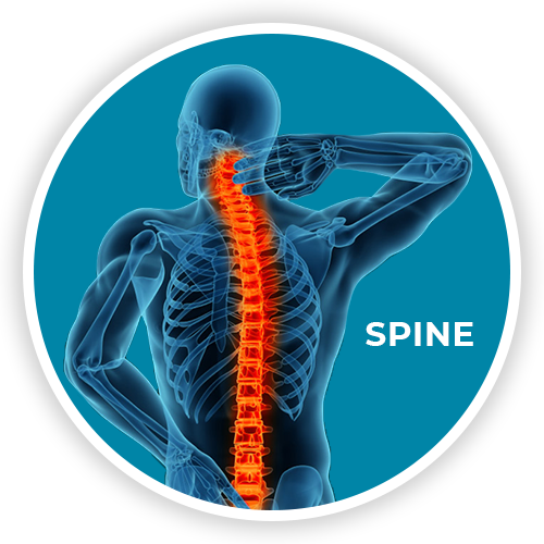 neck and back pain or injury