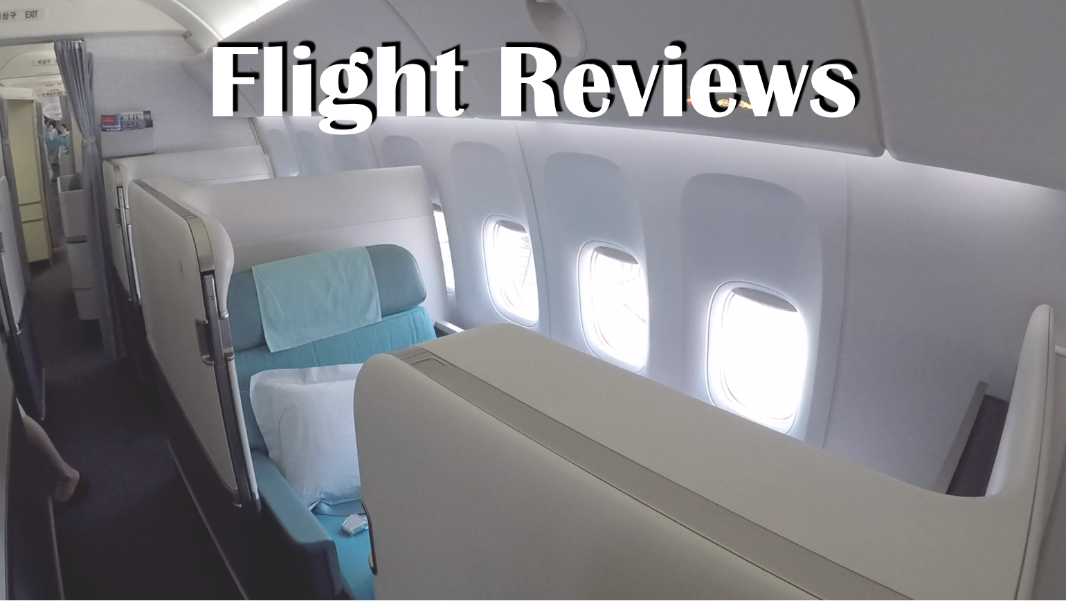 Flight Reviews.png