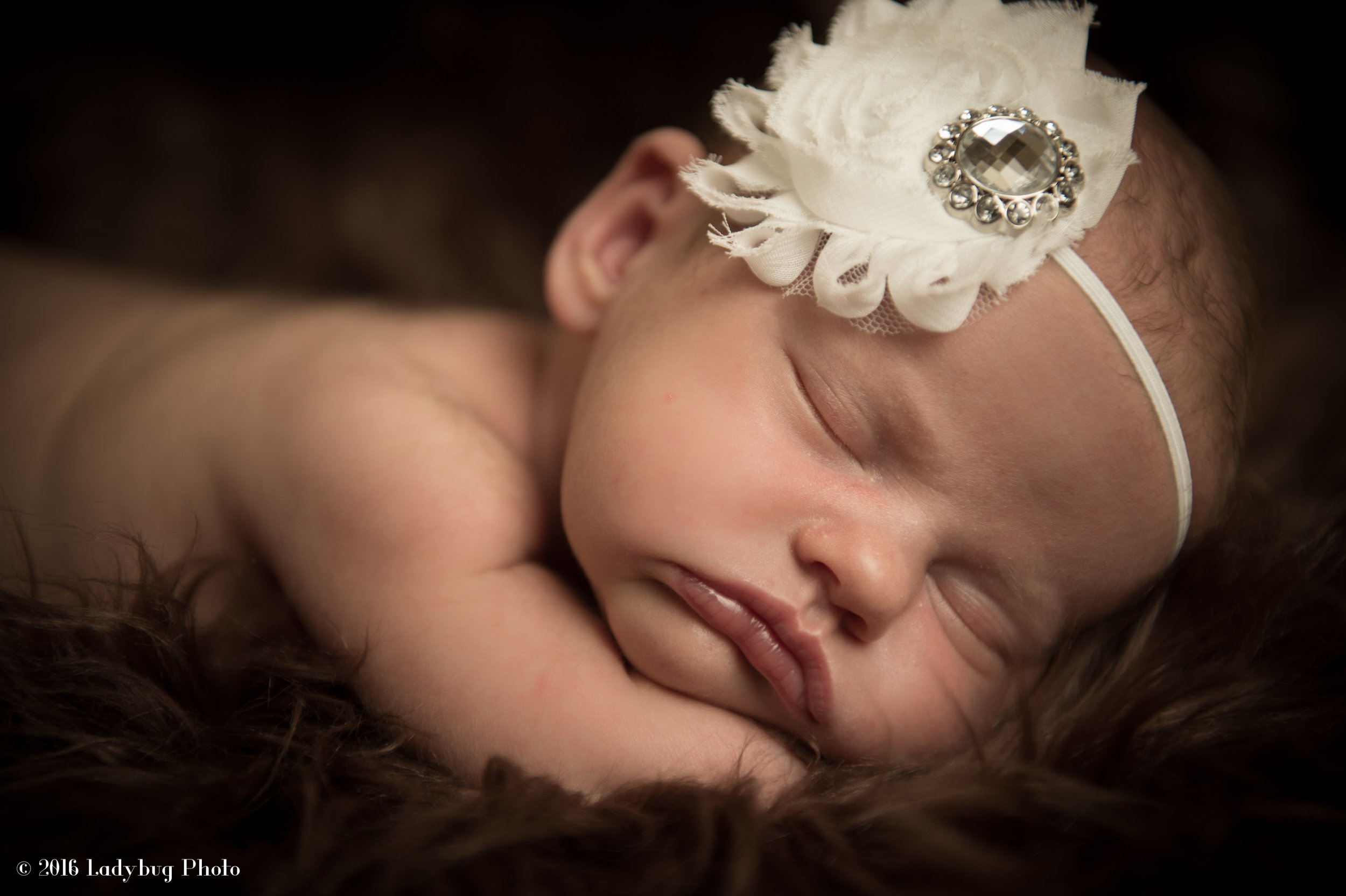 Vancouver Baby Newborn Family Photographer-7437.jpg