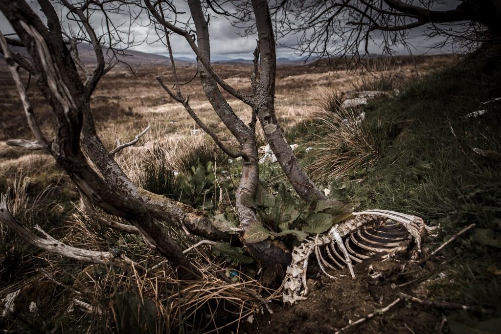 Scotland_Music_Video_Shoot-012-1024x683.jpg