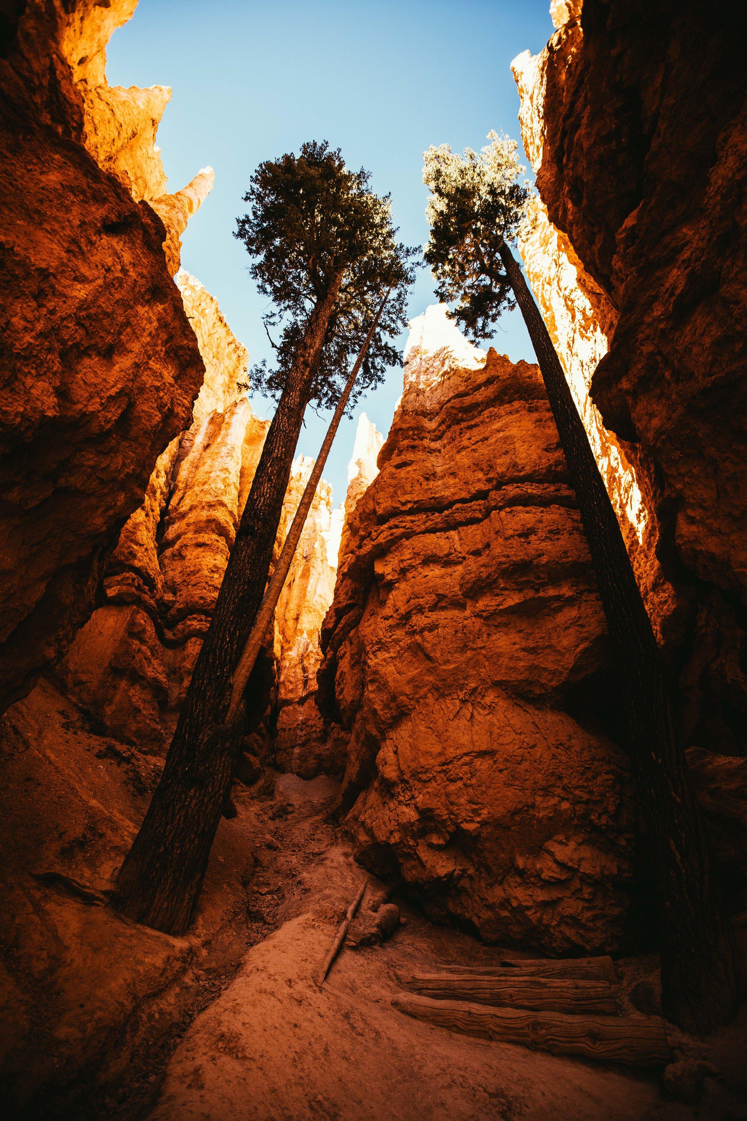 Join the Adventure - Utah - Day 3 (158 of 415).jpg
