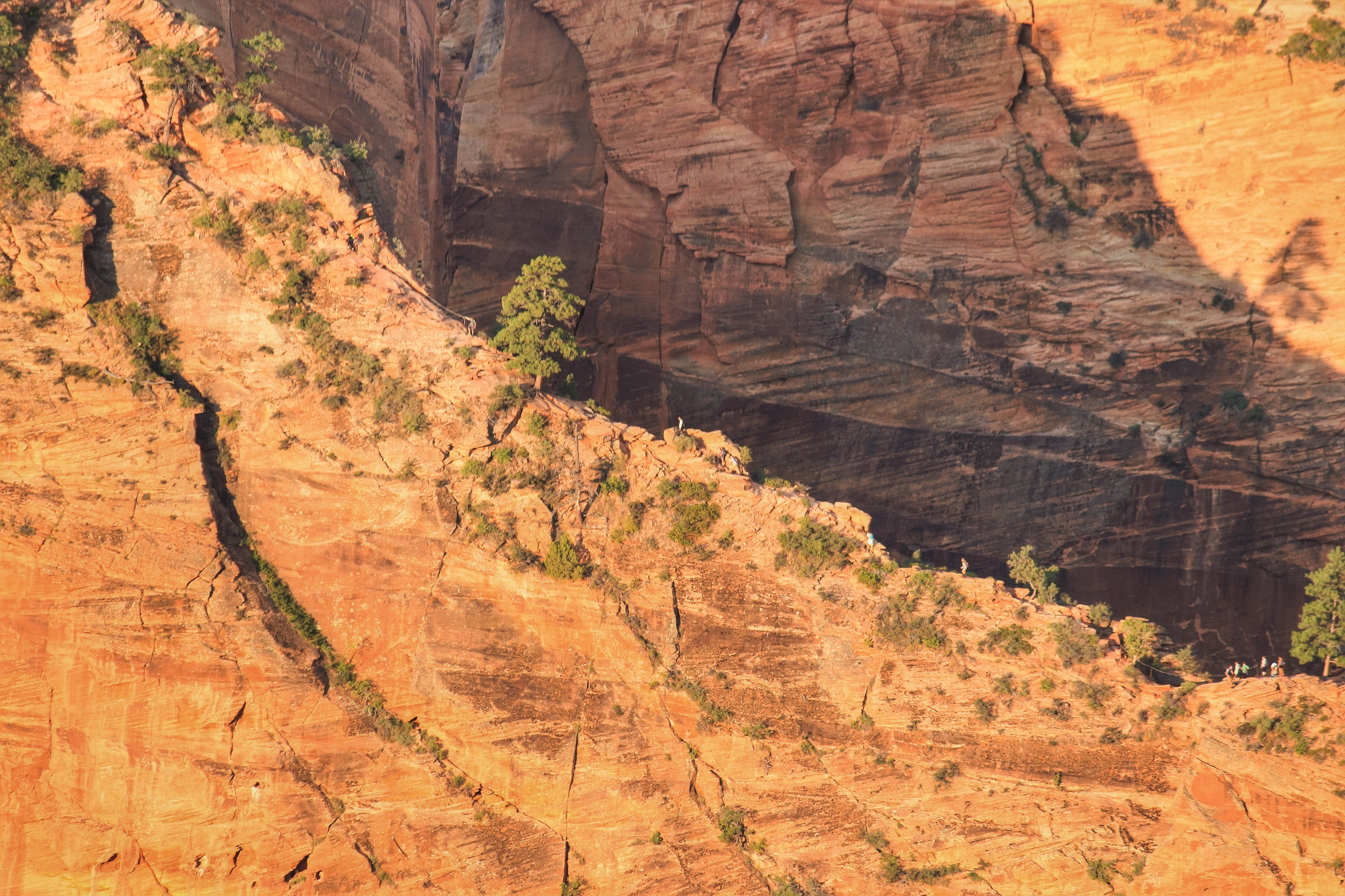 Early Birds get the worm, but the birds who got to their spot the night before, get to sleep in and watch the early birds working hard to get to the top of Angels Landing. I caught these first few hikers of the day with my Telephoto lens above them.