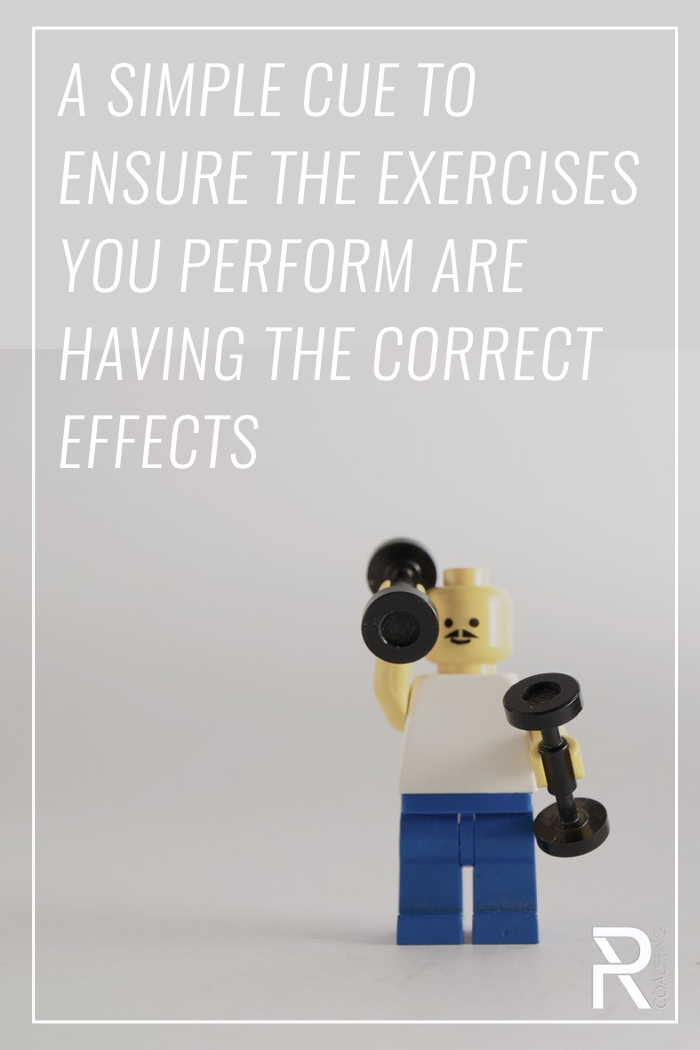 Even if an exercise looks perfect, it matters (a lot) which muscles you feel working/developing fatigue. Use this assessment guide to ensure your exercises are having the correct effects.