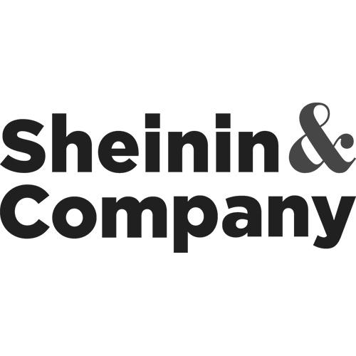 Sheinin.jpg