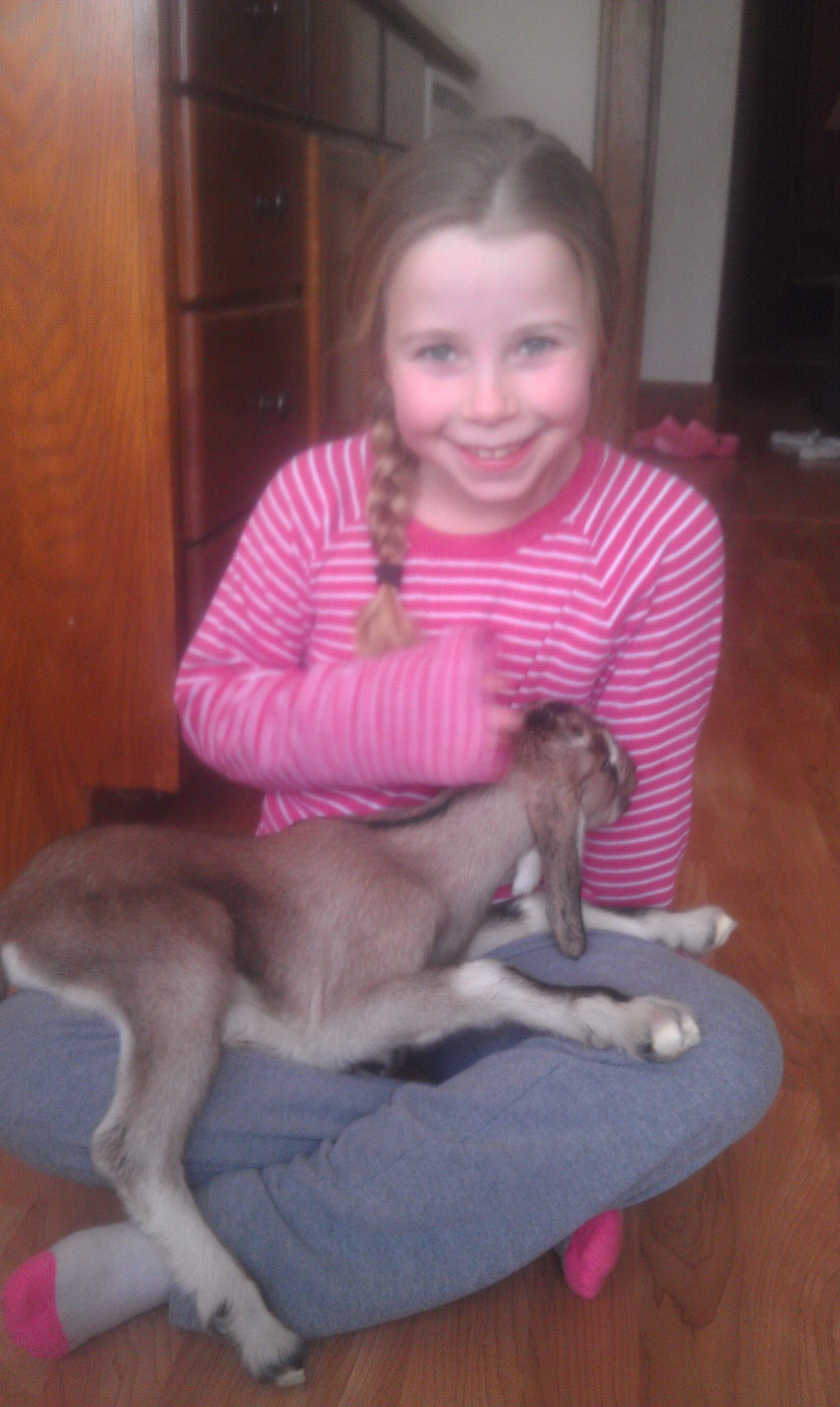 baby goat and kaity.jpg