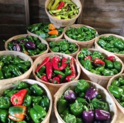 I had SO many peppers to freeze this summer!!