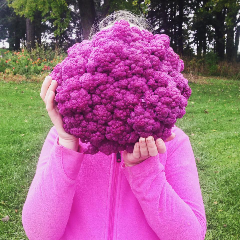 cauliflower head.jpg
