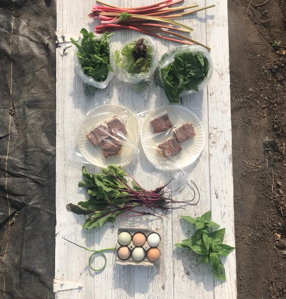Week 3: Rhubarb, Arugula, Leaf Lettuce, Spinach, ARNKA Peanut Butter Bars, Beet Greens, Garlic Scape, Eggs, Fresh Herbs