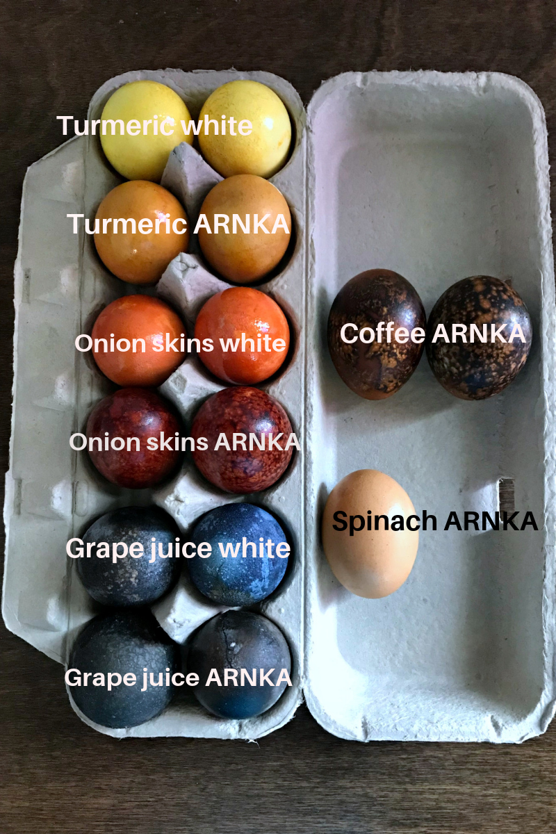Comparison of ARNKA and white eggs colored with natural dye