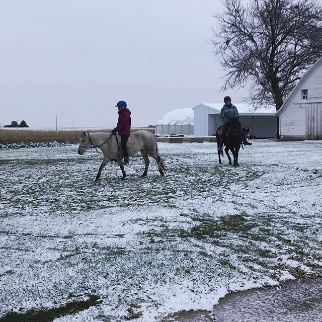 While I'm over here feel a tad bit grumpy about the snow on my veggie fields, the Young Farm Girls are excited the ground is finally firm enough to ride again. . As in they got out their ponies and rode before I was even finished with morning chores. . At least someone is happy about the frozen ground! . . . #youngfarmgirls #snow #farmfamily