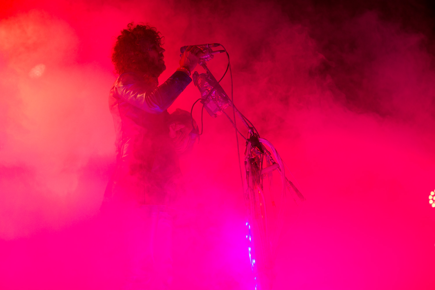 Wayne Coyne : The Flaming Lips