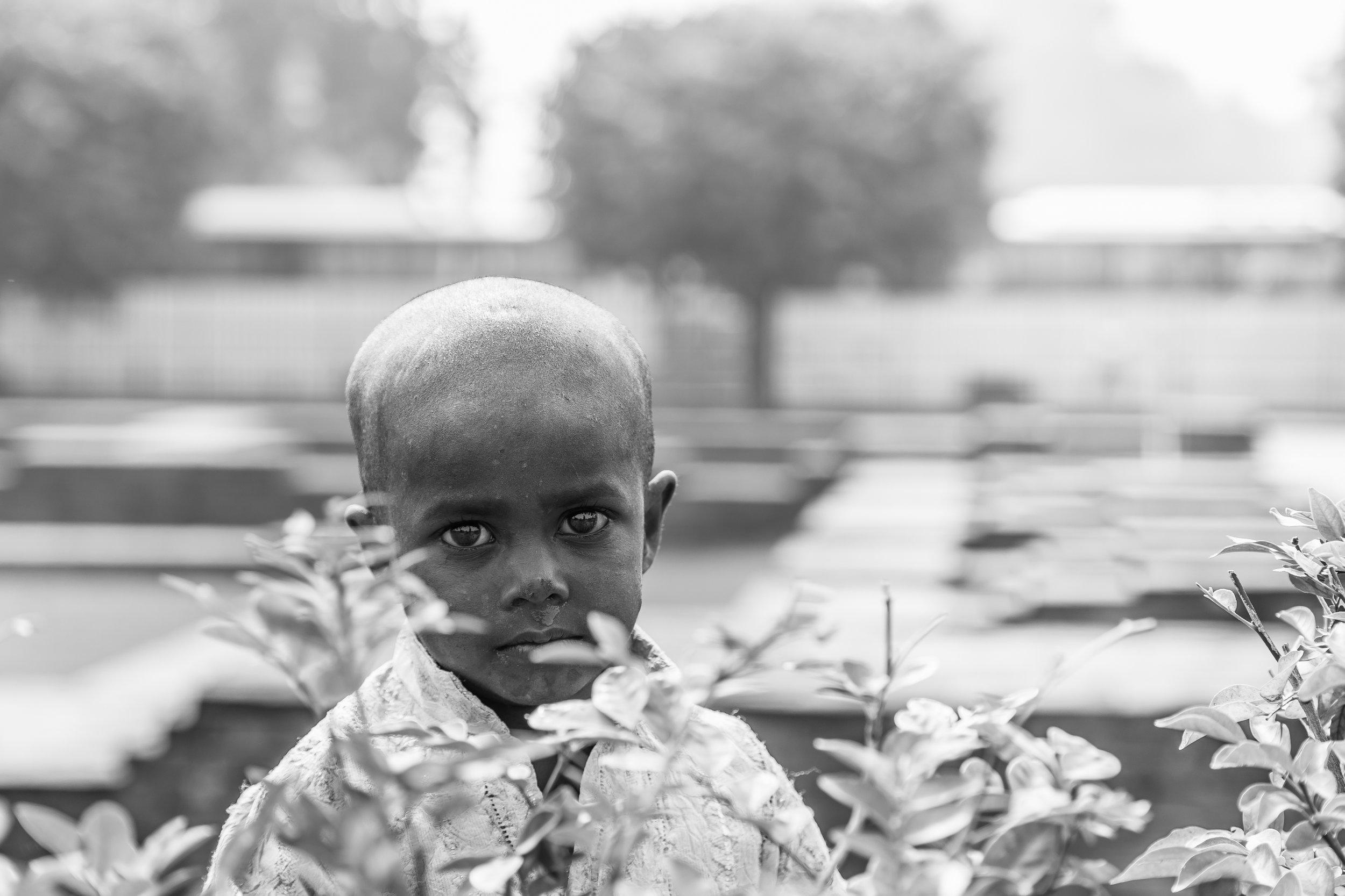 India 2013 - Lenssen-7051.jpg