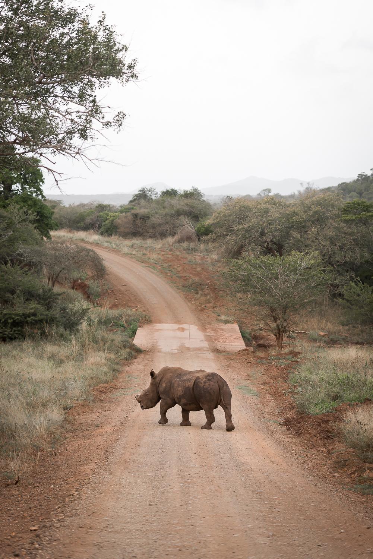 SouthAfrica-166_LR.jpg