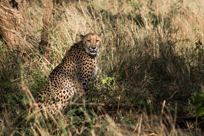 SouthAfrica-477_LR.jpg