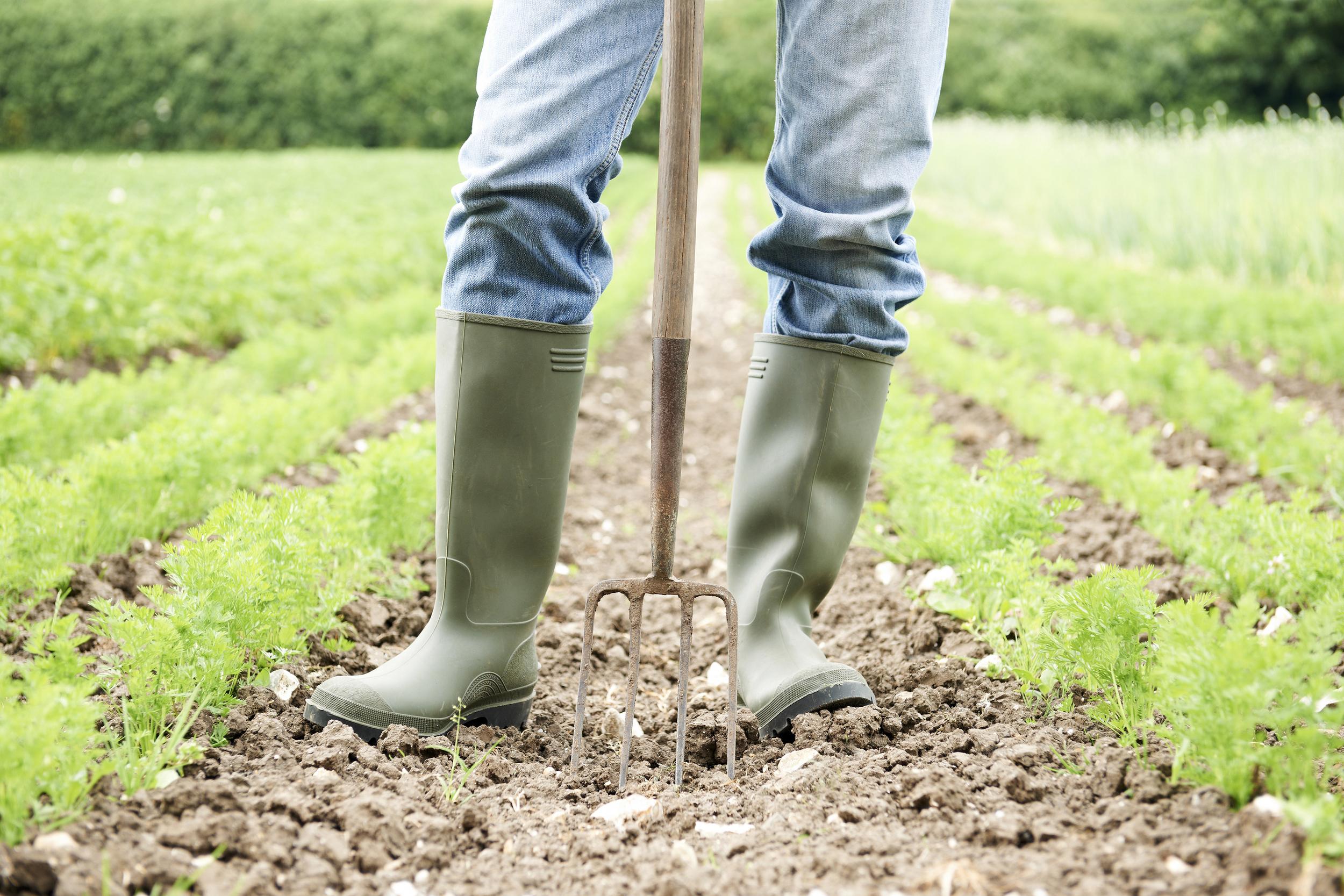 bigstock-Close-Up-Of-Farmer-Working-In--67841029.jpg