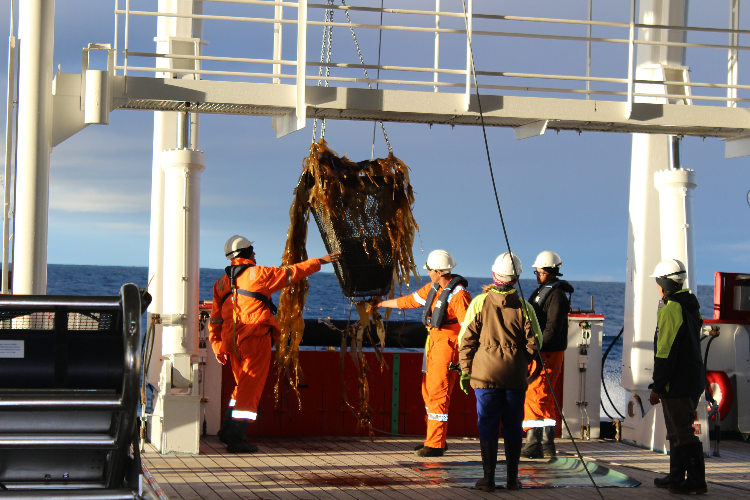 Sampling benthic deep sea fauna using a dredge on board of the SA Agulhas II