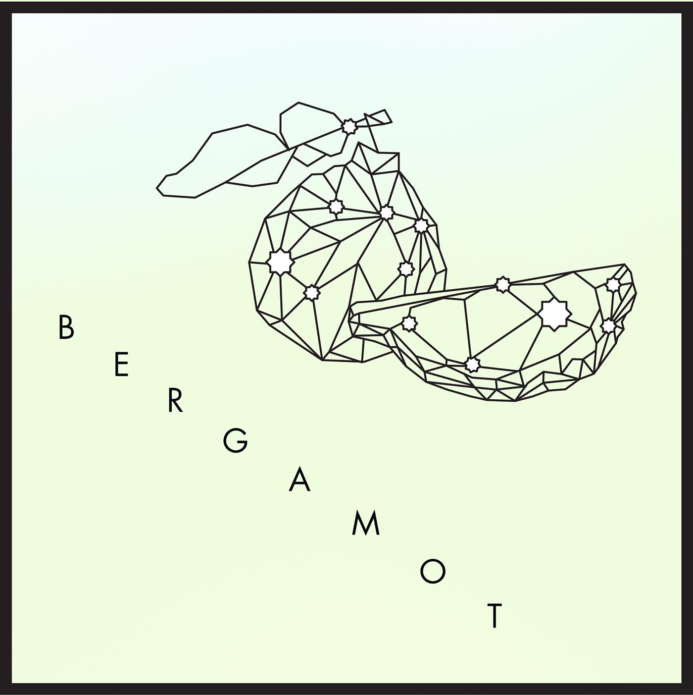 Bergamot Card