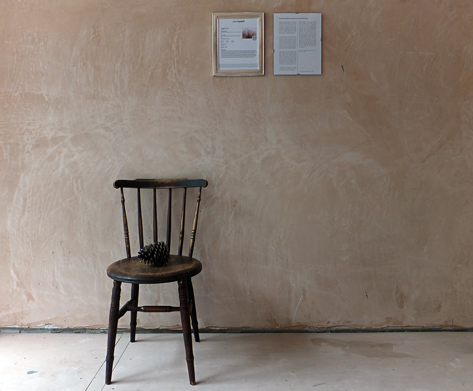 JUNK-CHAIR WITH BARE PLASTER.jpg
