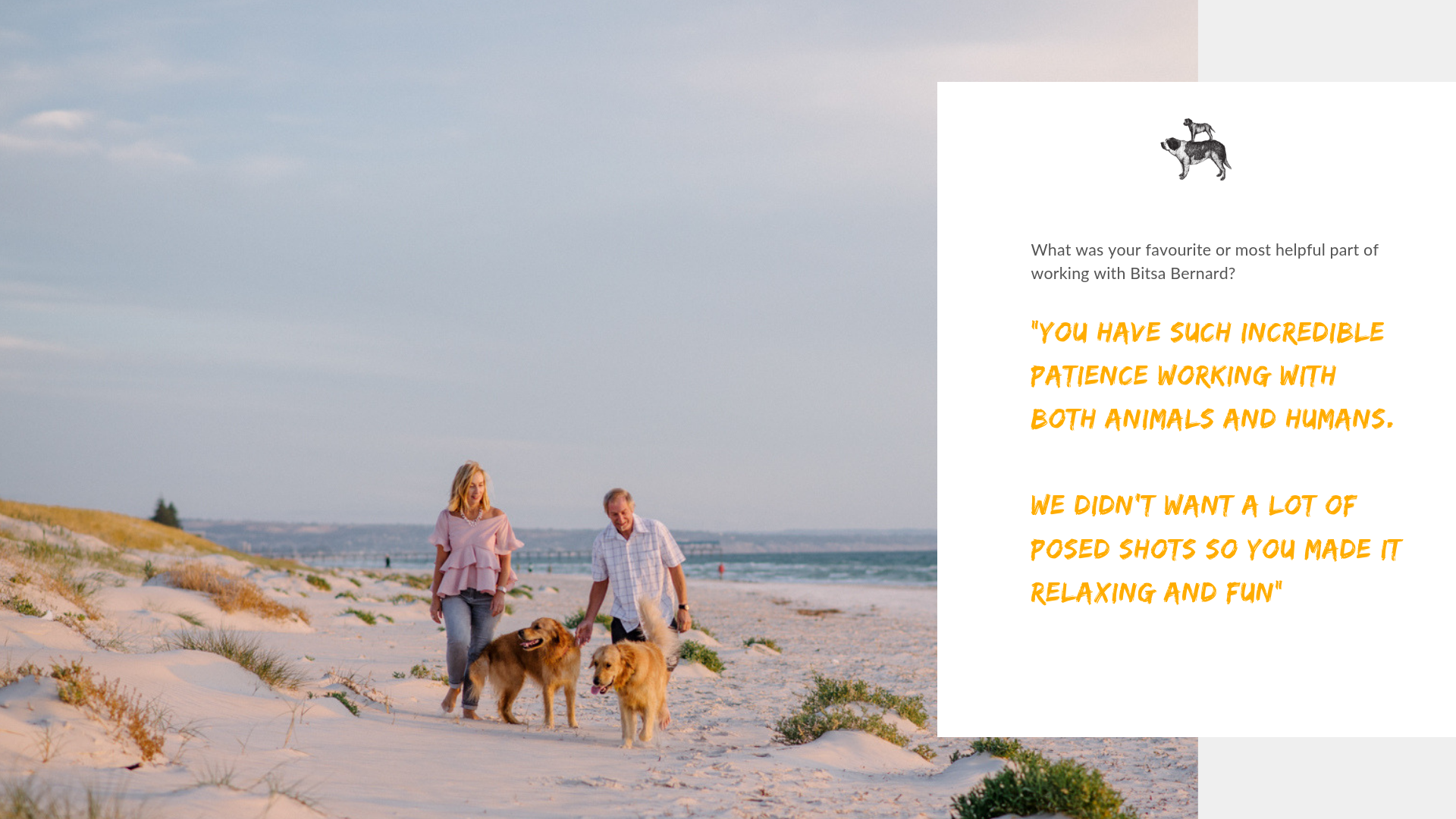 Review for best Dog Photographer in Adelaide