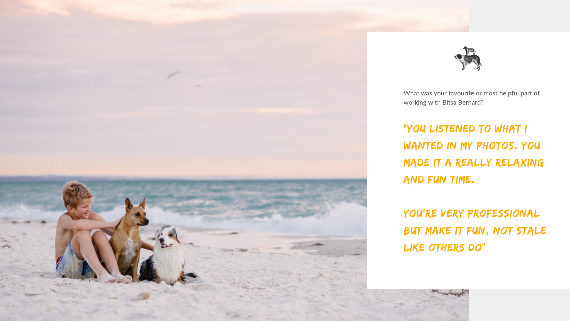 Review for Professional Dog Photographer in Adelaide that supports Animal Welfare charities