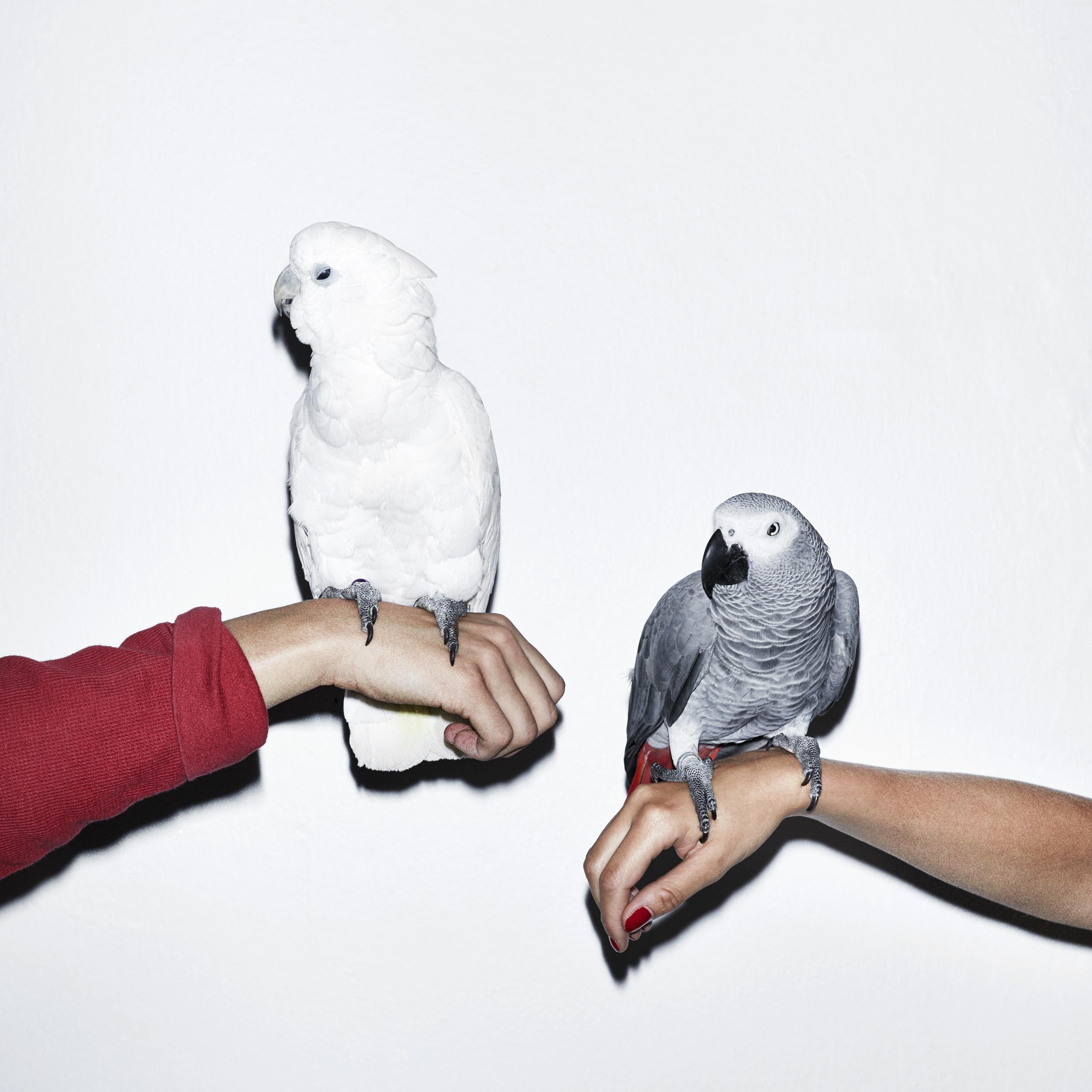 M.I.L.K. - U And Me