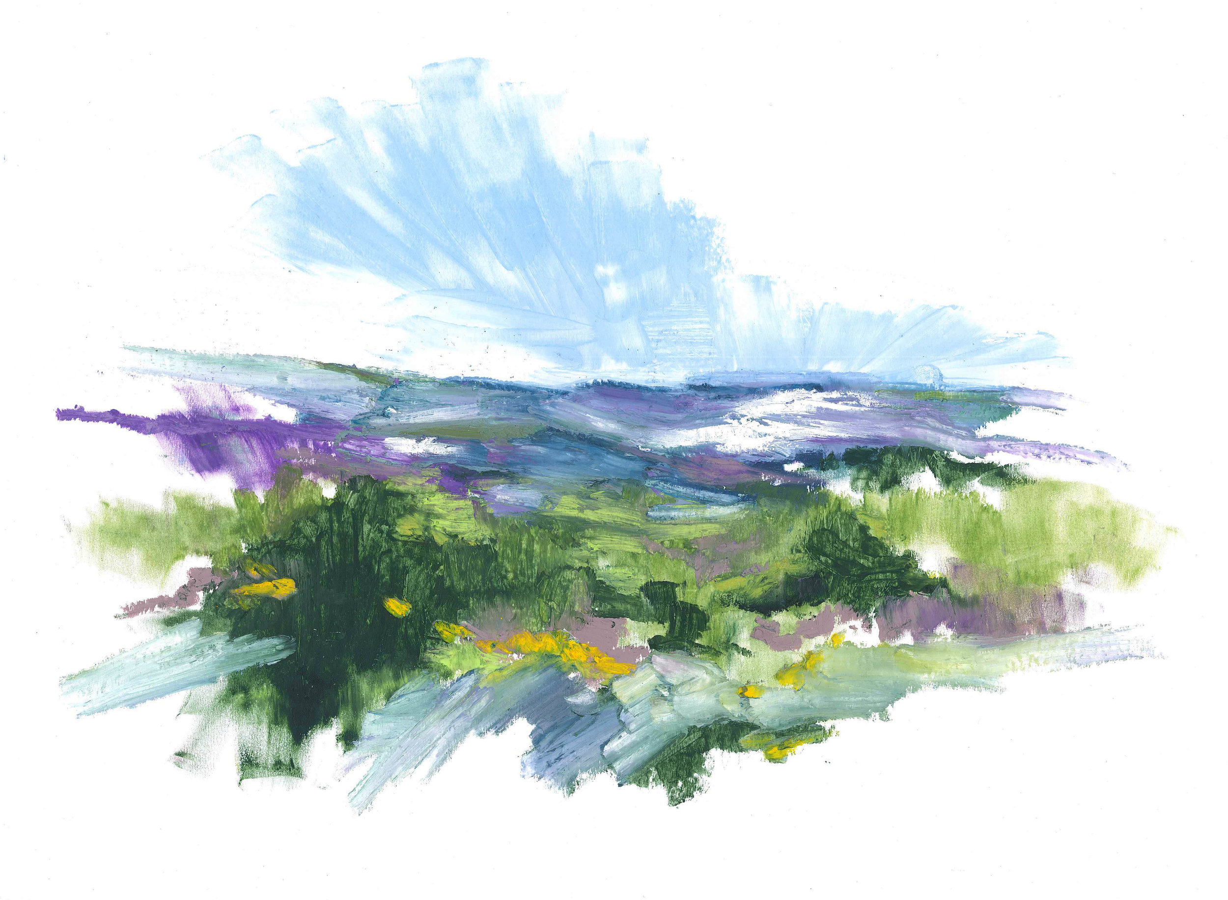 Heath at Studland