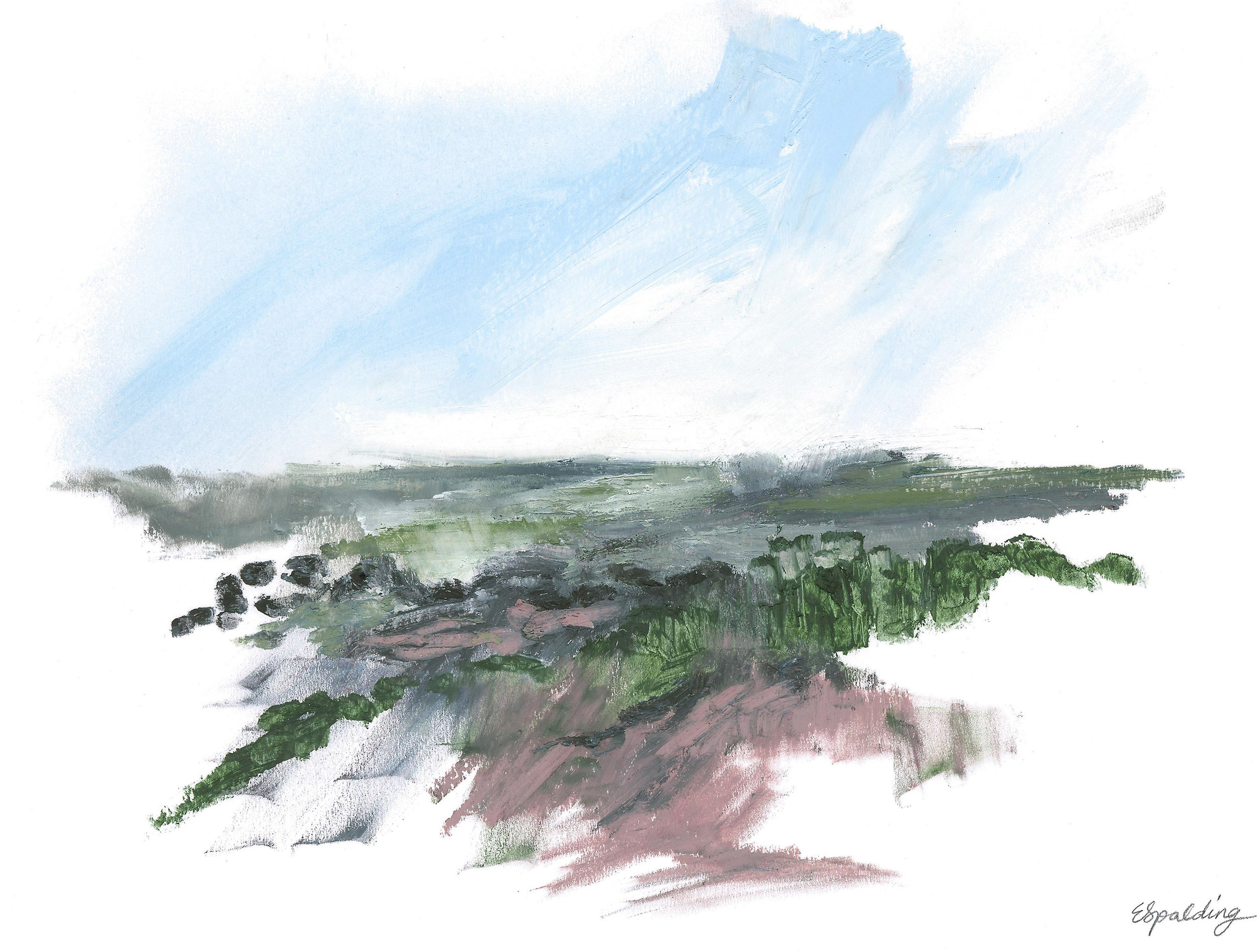 IV. Studland Heath Series