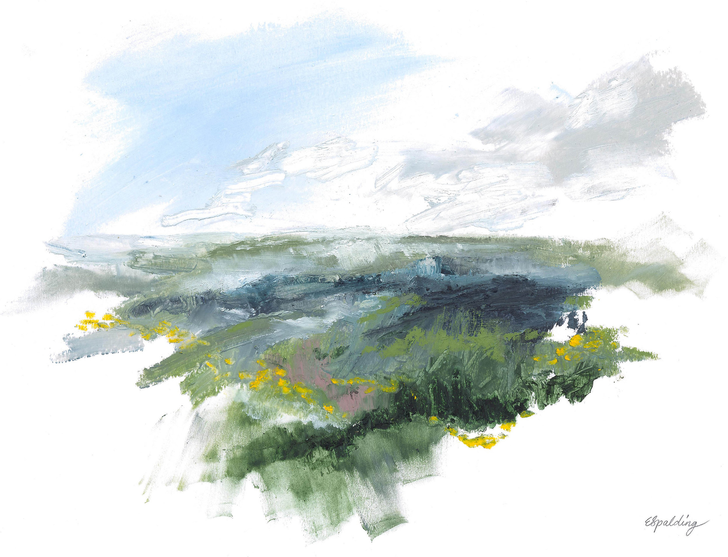 III. Studland Heath Series