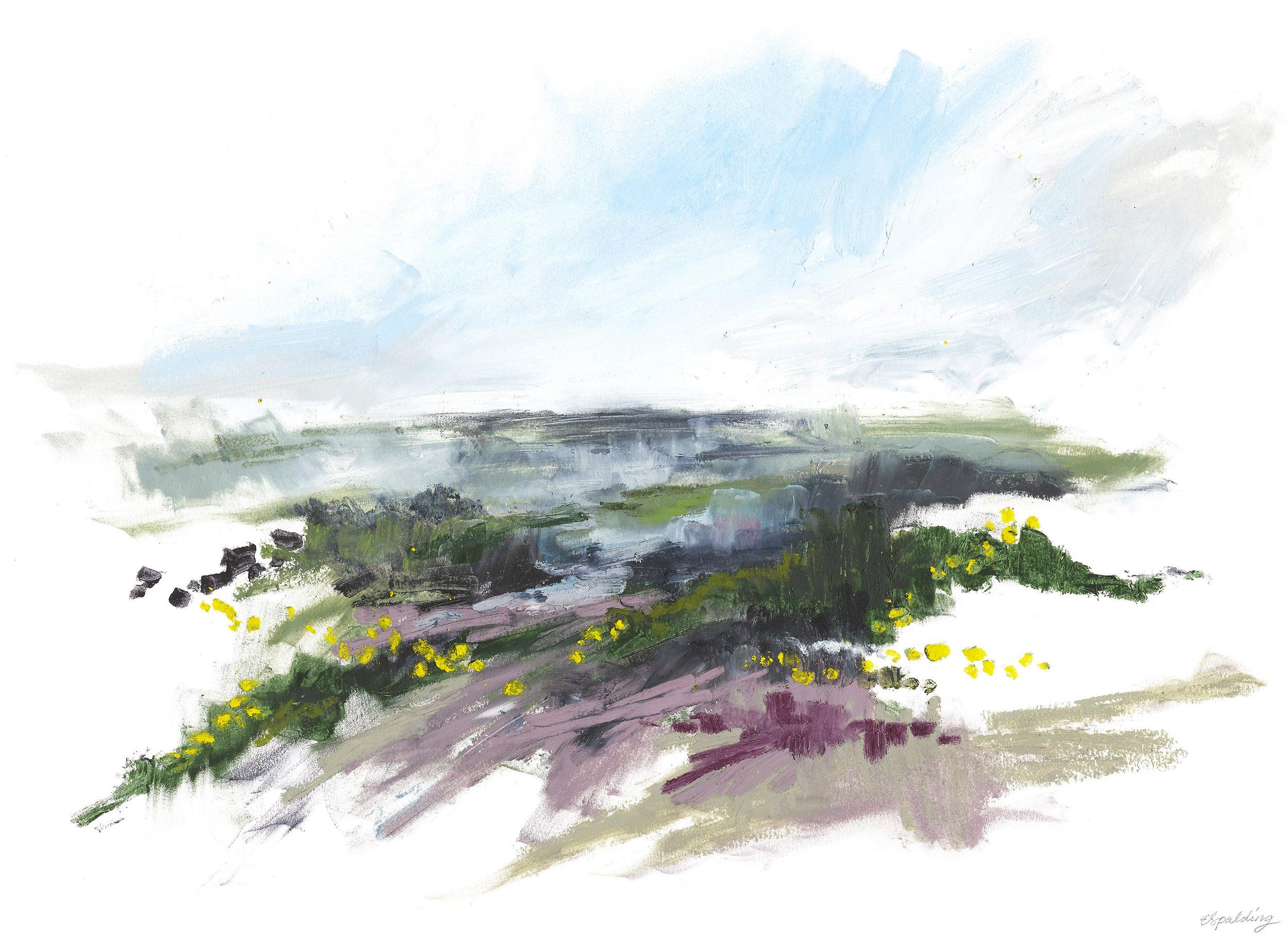I. Studland Heath Series