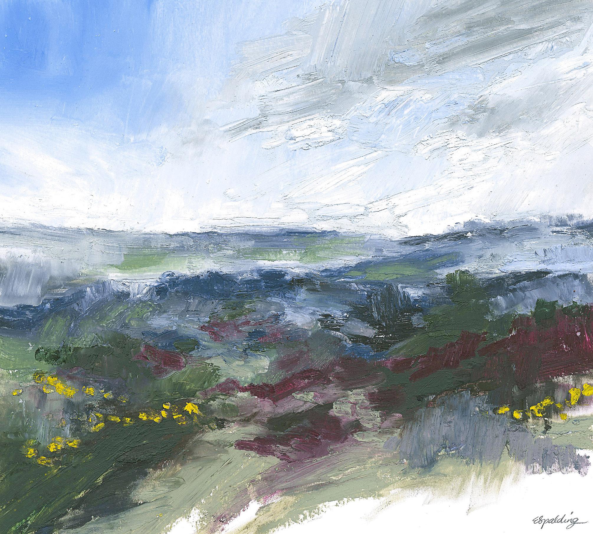 V. Studland Heath Series